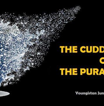 The Cuddapah Systems